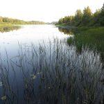 Великая (впадает в Финский залив)