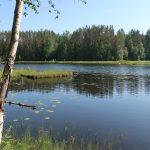 Котовское