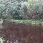Великая (впадает в Гладышевское озеро)